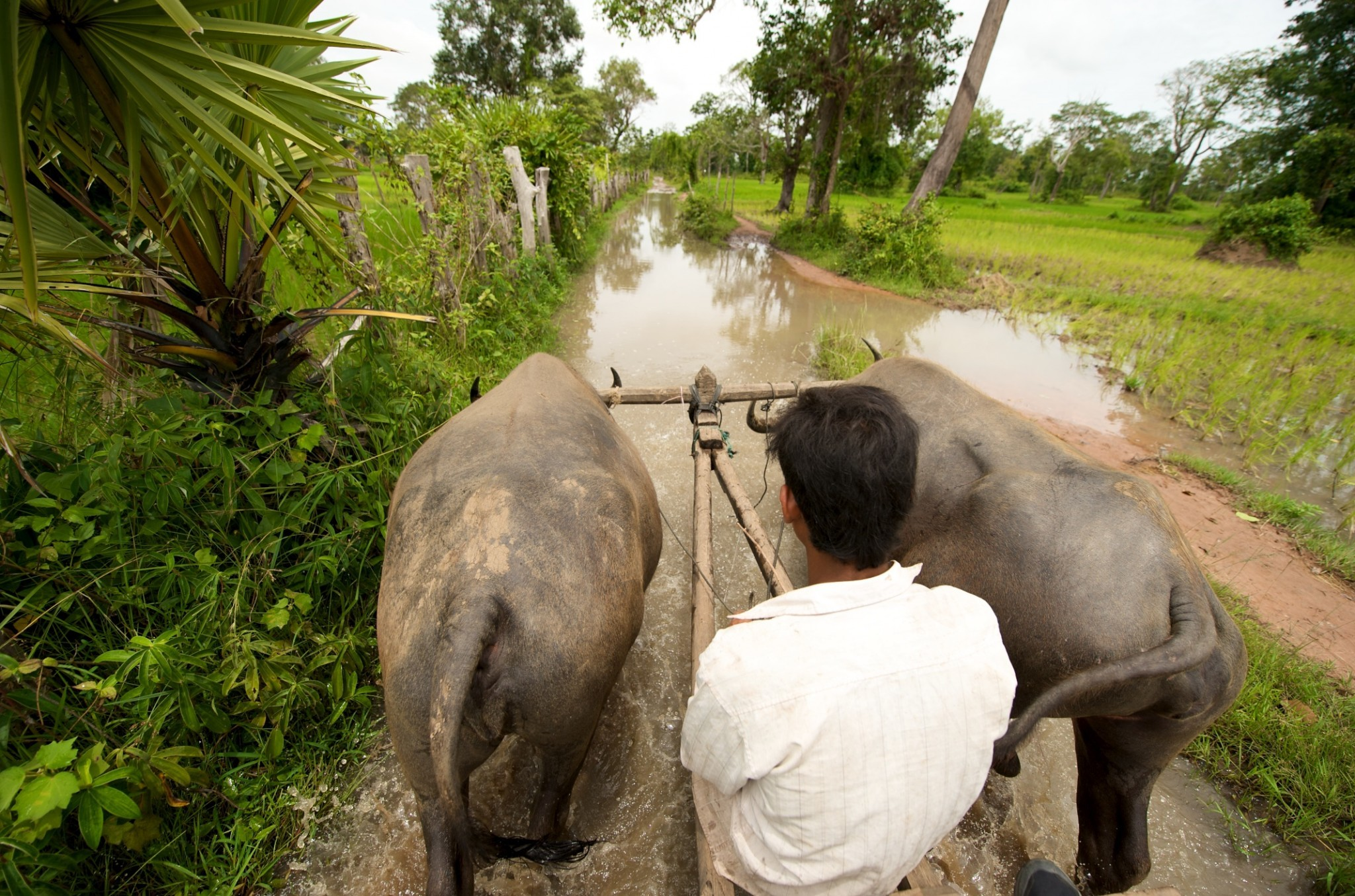 AlexSoh_July09 Cambodia167