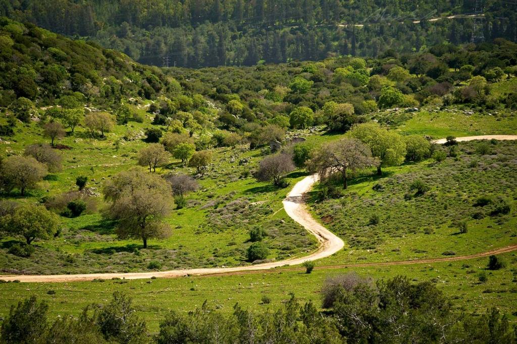 Israel March 2011 55