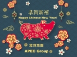 Happy CNY 2019 APEC TC Eng..