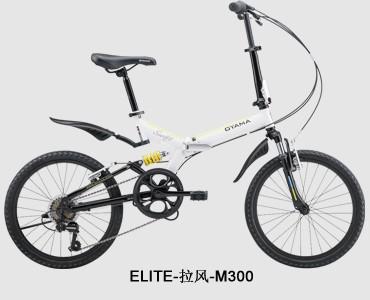 ELITE-拉風-M300