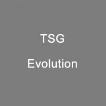 装备背景_Evolution