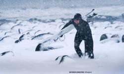 Arctic Swell极地弄潮