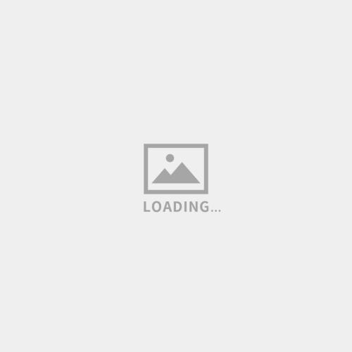 logo设计-莫莎 MUSE MOSA-辅助图形