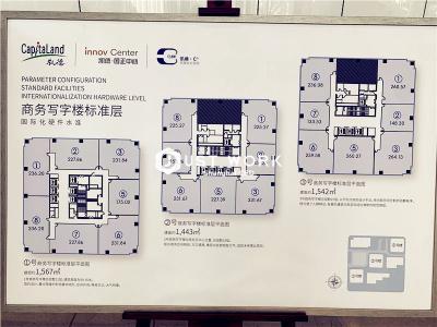国正中心 (8)