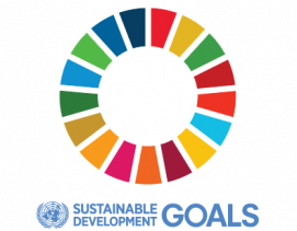 SDG-logo-transparent