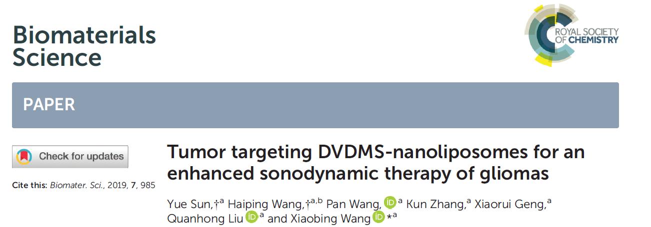 Tumor targeting DVDMS-nanoliposomes for an enhanced sonodynamic therapy of gliomas