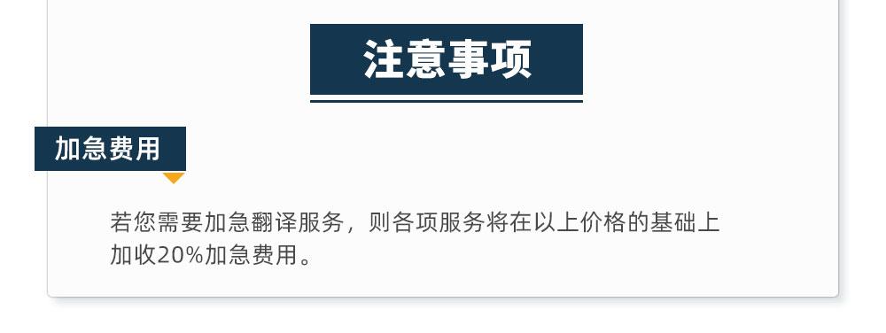 翻译服务_10