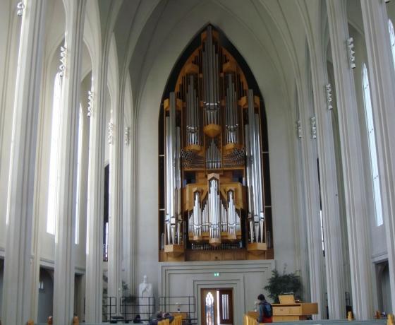 哈尔格林姆斯大教堂    Hallgrímskirkja (7)