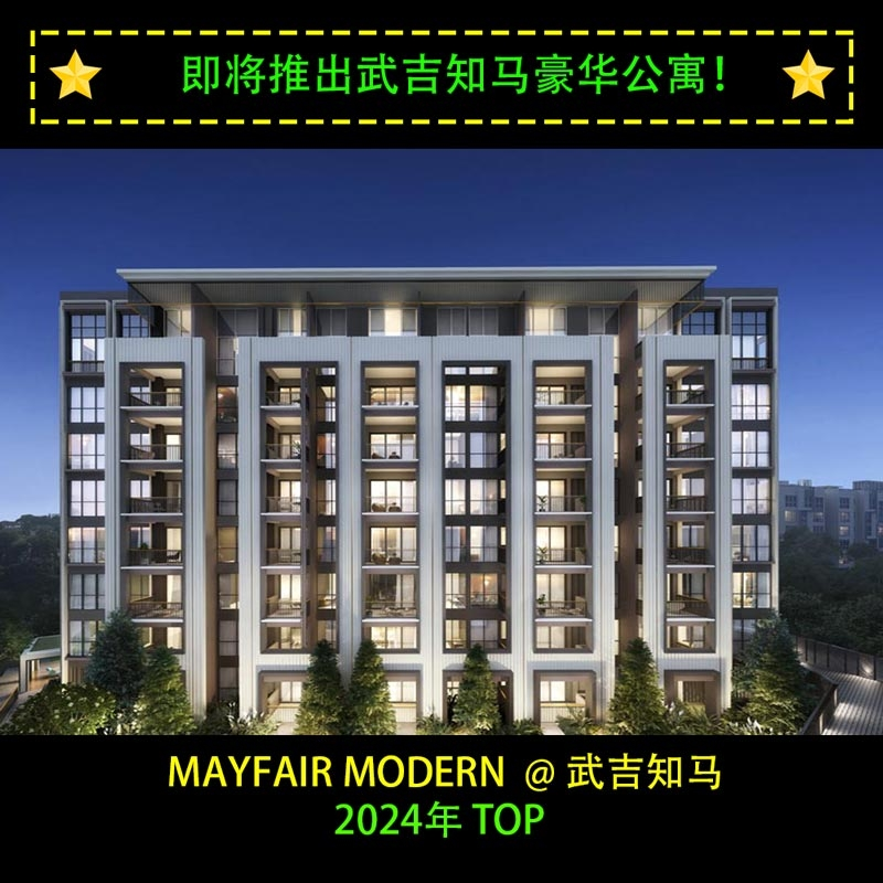 Mayfair Modern CI