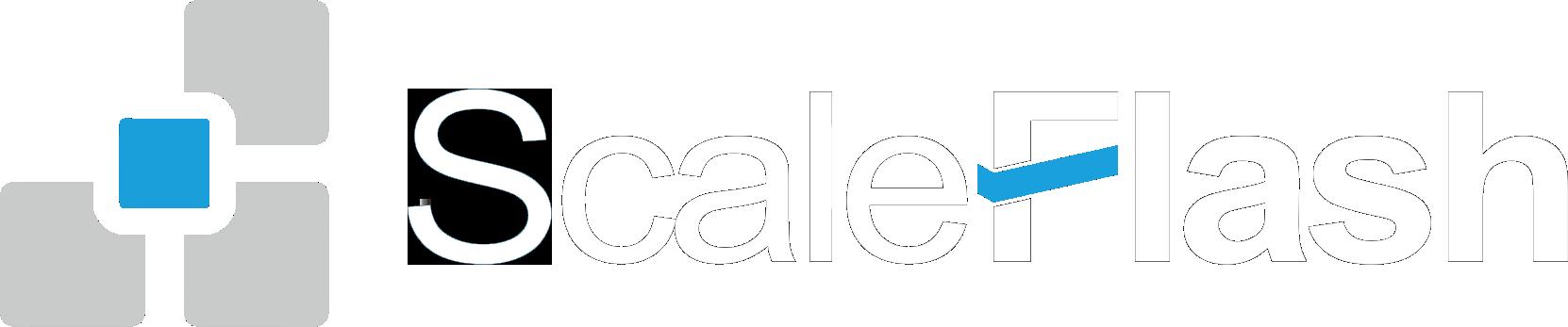 ScaleFlash极客天成