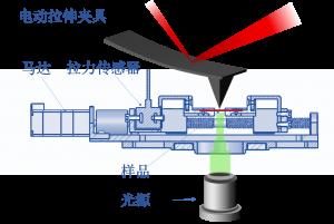 AFM电动拉伸夹具概念图