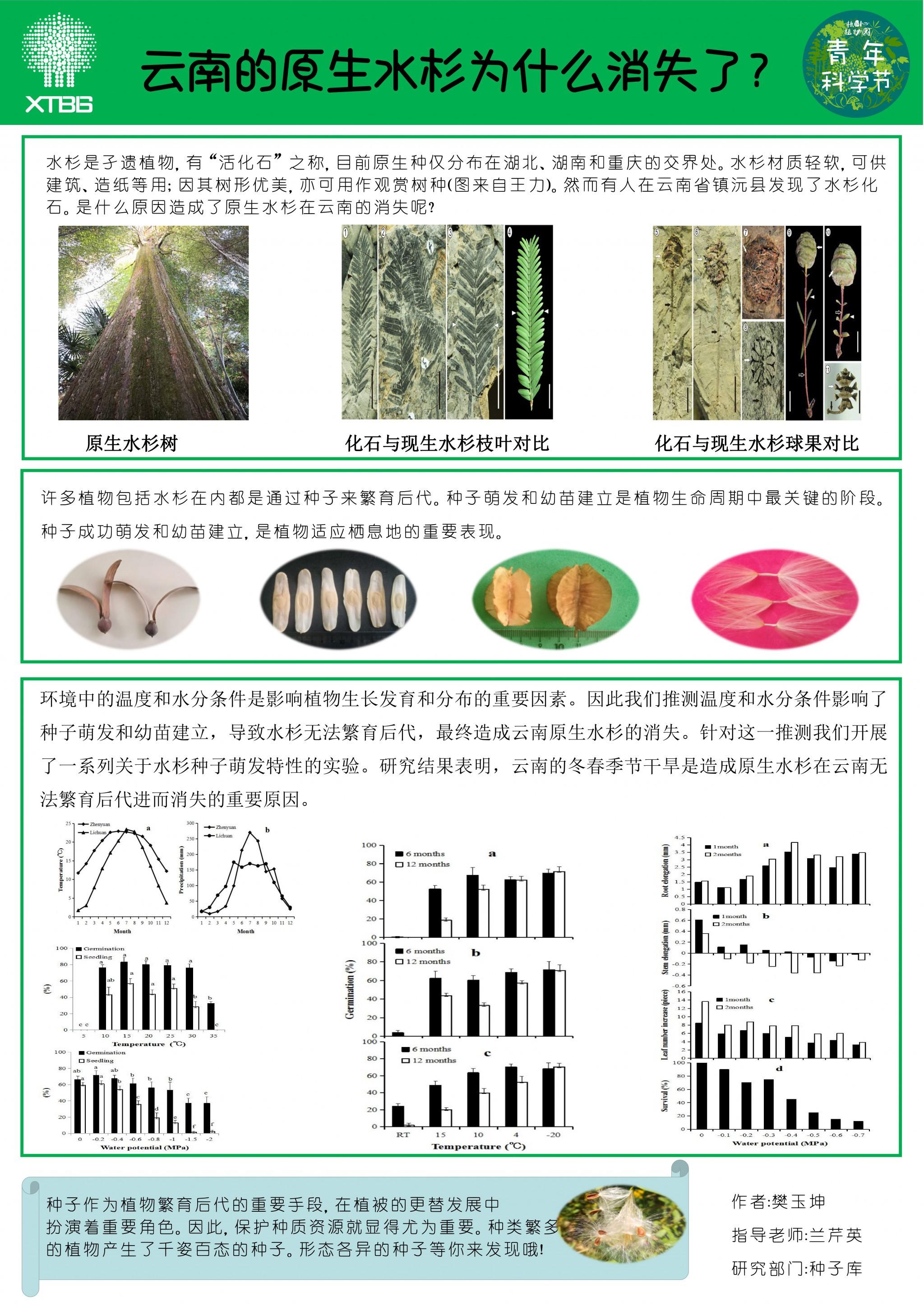 2-6 樊玉坤-云南的原生水杉为什么消失了?