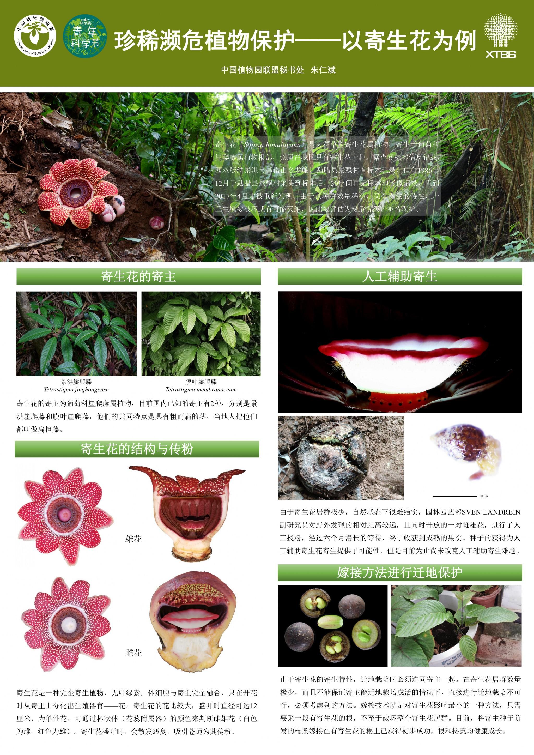 1-4 朱仁斌-珍稀濒危植物保护——以寄生花为例3